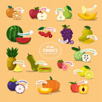 Delicious fruit icons vector