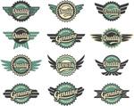 Vintage wings tab vector