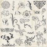 European flower patterns vector