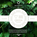 Greenery backgrounds vector