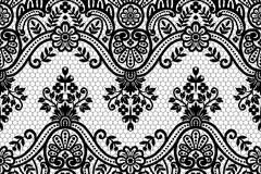 Black Lace patterned borders vector
