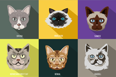 9 exquisite Cat Head vector