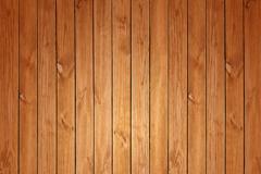 Beautiful wood grain background vector map