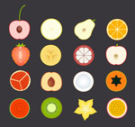 Fruit slice vector