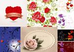 Rose border ideas vector