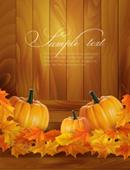 Beautiful pumpkins vector