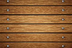 Nail the wood background vector