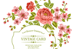 Red Rose apricot flower cards vector