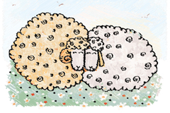 Sheep painted the grass vector