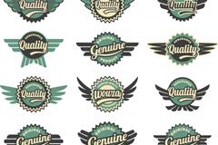 Creative wings tag vector