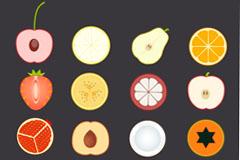 16 fruit slice vector