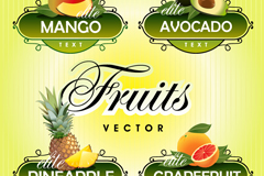 4 creative fruit label vector