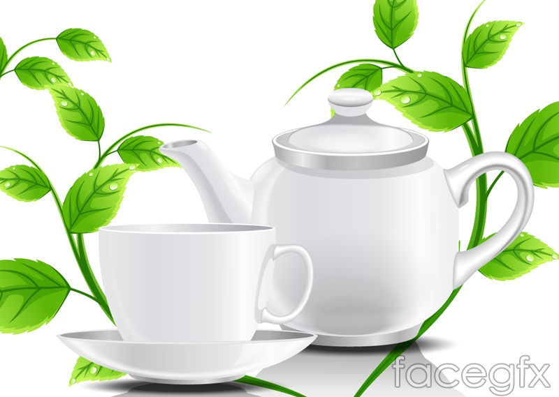 Green Tea Leaf Vector The White tea with gre...