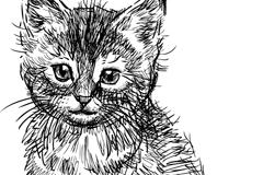 Black hand-painted cat design vector