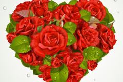 Dew rose love vector