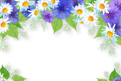 White and purple chrysanthemums border design vector
