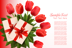 Tulip cards, vector