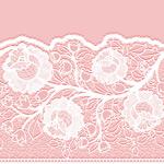 Delicate floral lace vector