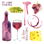 Watercolor wine illustrations vector