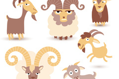 6 cartoon sheep design vector