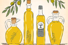 Beautiful painted olive oil vector