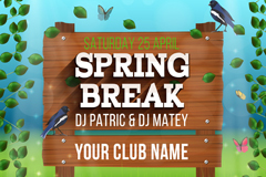 Club Spring poster vector