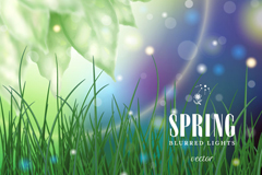 Spring dream grass vector