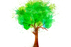 Green watercolor trees vector