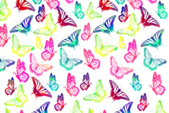 Painted Butterfly seamless vector background illustration
