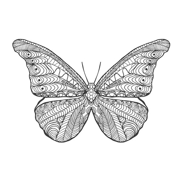 Butterfly tattoo designs vector