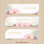 Elegant flower banner vector