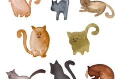 8 water paint cat vector