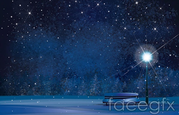 Winter night color vector