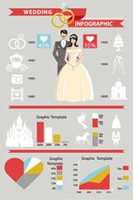 Wedding expense information vector