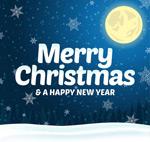 Cartoon Christmas snowy night greeting cards vector